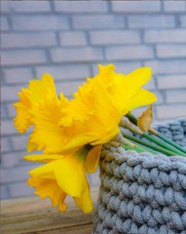 Makkelijke voorjaarsbloemen, mijn tips