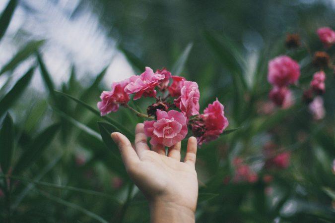 Bloemen ruiken