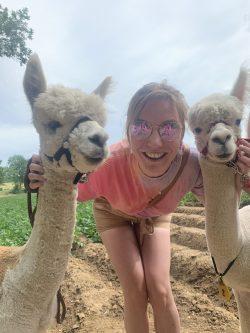 Charlie met alpacas